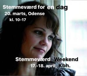 stemmevc3a6rd-reklame-jan-21